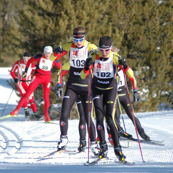 Ski racing in January 2010